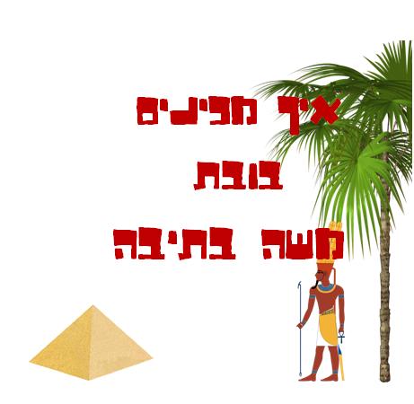 פעילות פסח -משה בתיבה (הפעלה לגדולים)